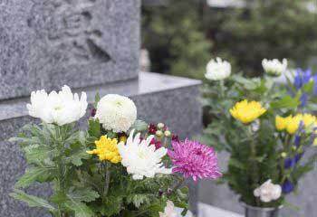 お墓のお引越しにためらうのはナンセンス