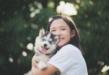 愛犬が隣人から暴力被害 傷害罪で告訴できるのか、損害賠償は請求できるのか