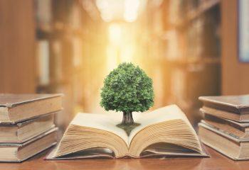 将来の自分への自己投資、教育ローンで進学を諦めない