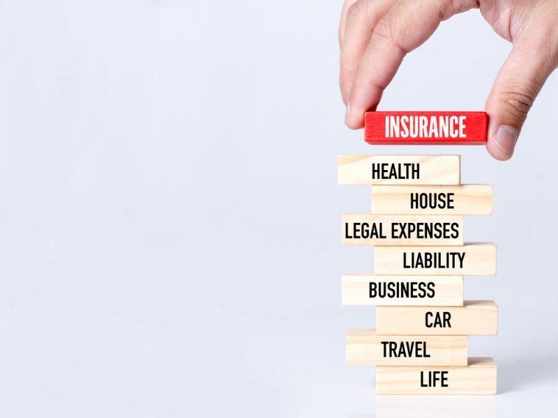 独特のマーケットとチャネルで成長…少額短期保険(生保系)