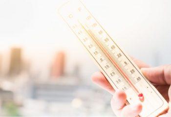 連日の猛暑で株価が下落!? 気候変動が資産運用に与える影響とは?
