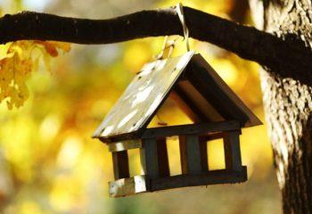 旅行中の空き巣被害。窓の破損や盗難品は、どこまで火災保険で補償される?