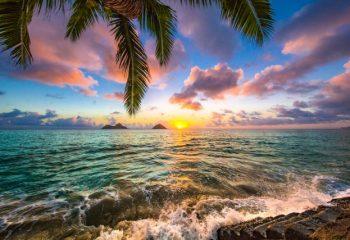 年末年始は最大9連休!海外旅行先1位のハワイ、根強い人気のワケ