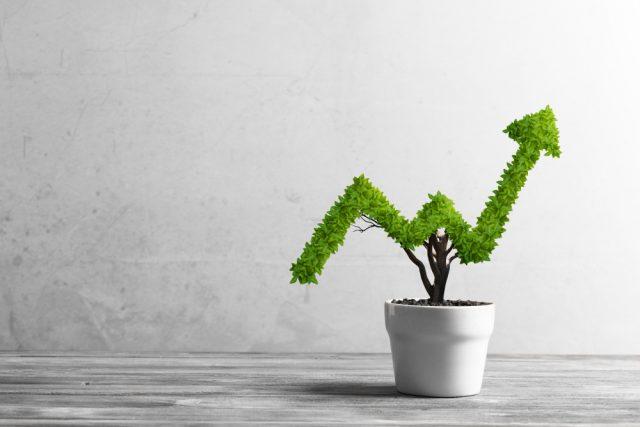 投資信託って何? FPがわかりやすく解説
