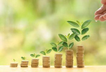 投資初心者は知っておきたい投資信託の仕組みと留意点