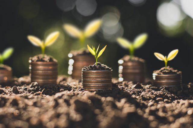 コロナで価格が乱高下。初心者さんが投資を始めるための方法とは?