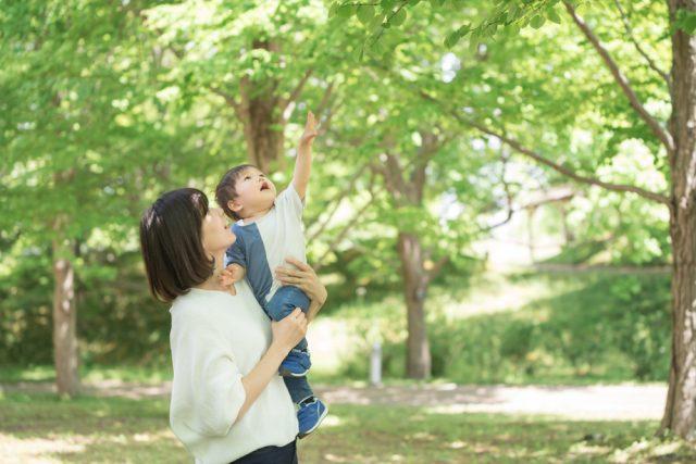 シングルマザーの年金事情。納付が困難な場合や死別した場合は?