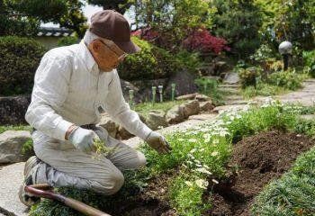 変わる年金。75歳まで働くために必要なこととは? 在職老齢年金のこと