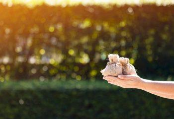 新しく設けられた大型補助金「事業再構築補助金」をご存じですか?