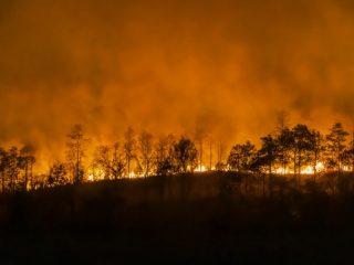 自然災害は増えているが損害保険代理店は減っている
