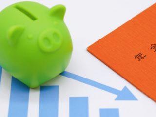 免除された国民年金保険料。追納しなかったら、受給額はどれくらい減る?