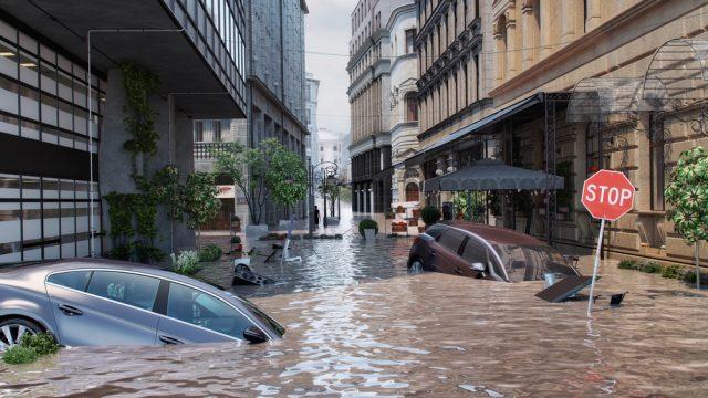 自然災害による車の被害、自動車保険で補償される?